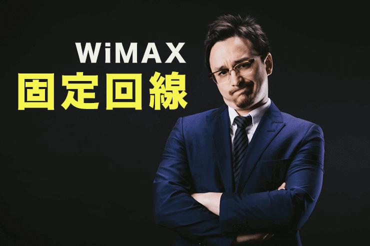 wimax 固定回線
