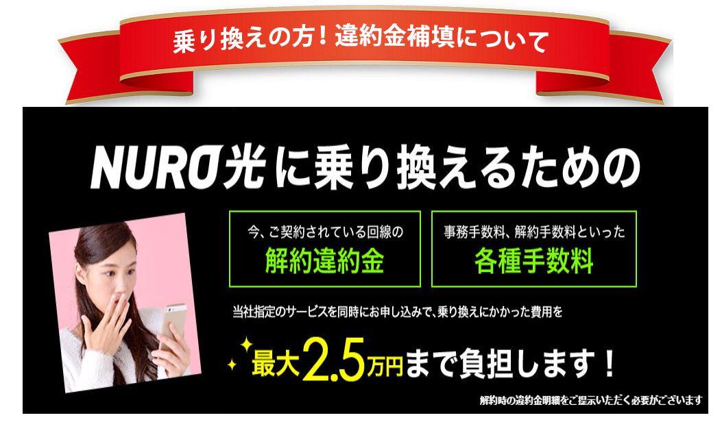 NURO光 フルマークス