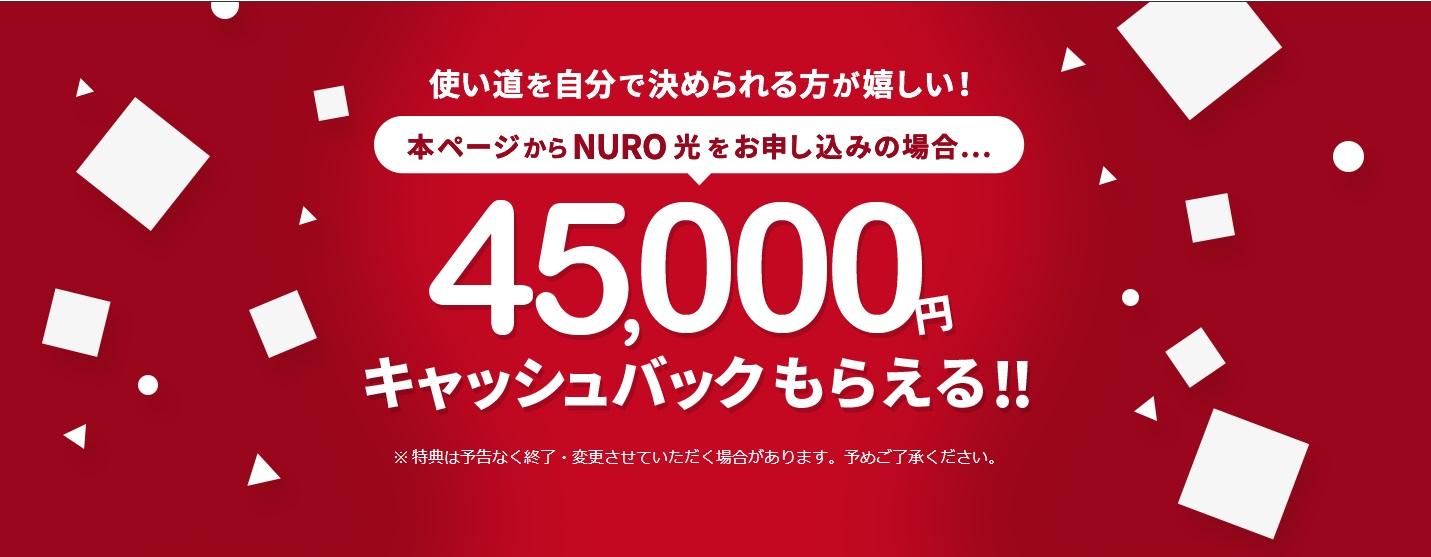 hikarikaisen_nuro